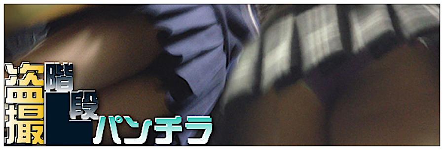 無修正エロ動画|追い撮り!!階段パンチラ|丸見えまんこ