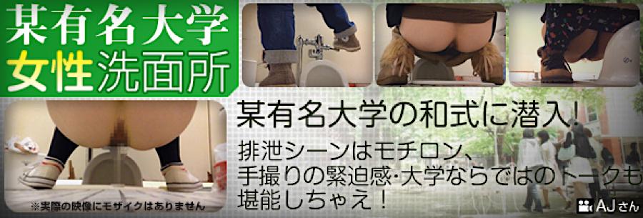 無修正エロ動画|某有名大学女性洗面所|無毛まんこ