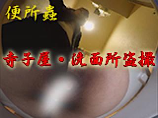 無修正エロ動画|寺子屋・洗面所盗SATU|おまんこパイパン