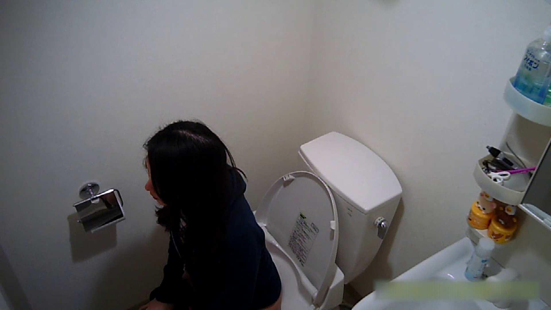 無修正エロ動画 清楚な顔してかなり敏感なE子25歳(仮名)Vol.04 トイレ編 怪盗ジョーカー