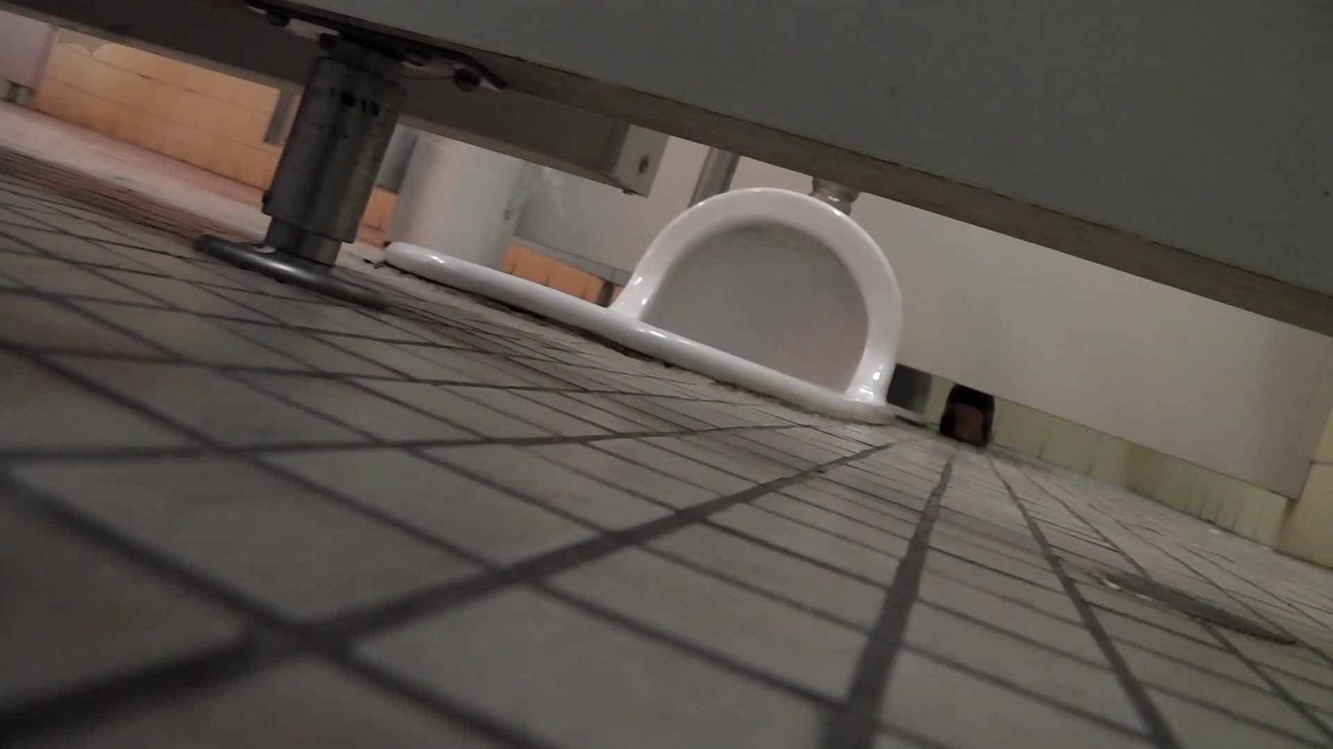 無修正エロ動画|第三体育館潜入撮File022 進化3【2015・19位】|怪盗ジョーカー