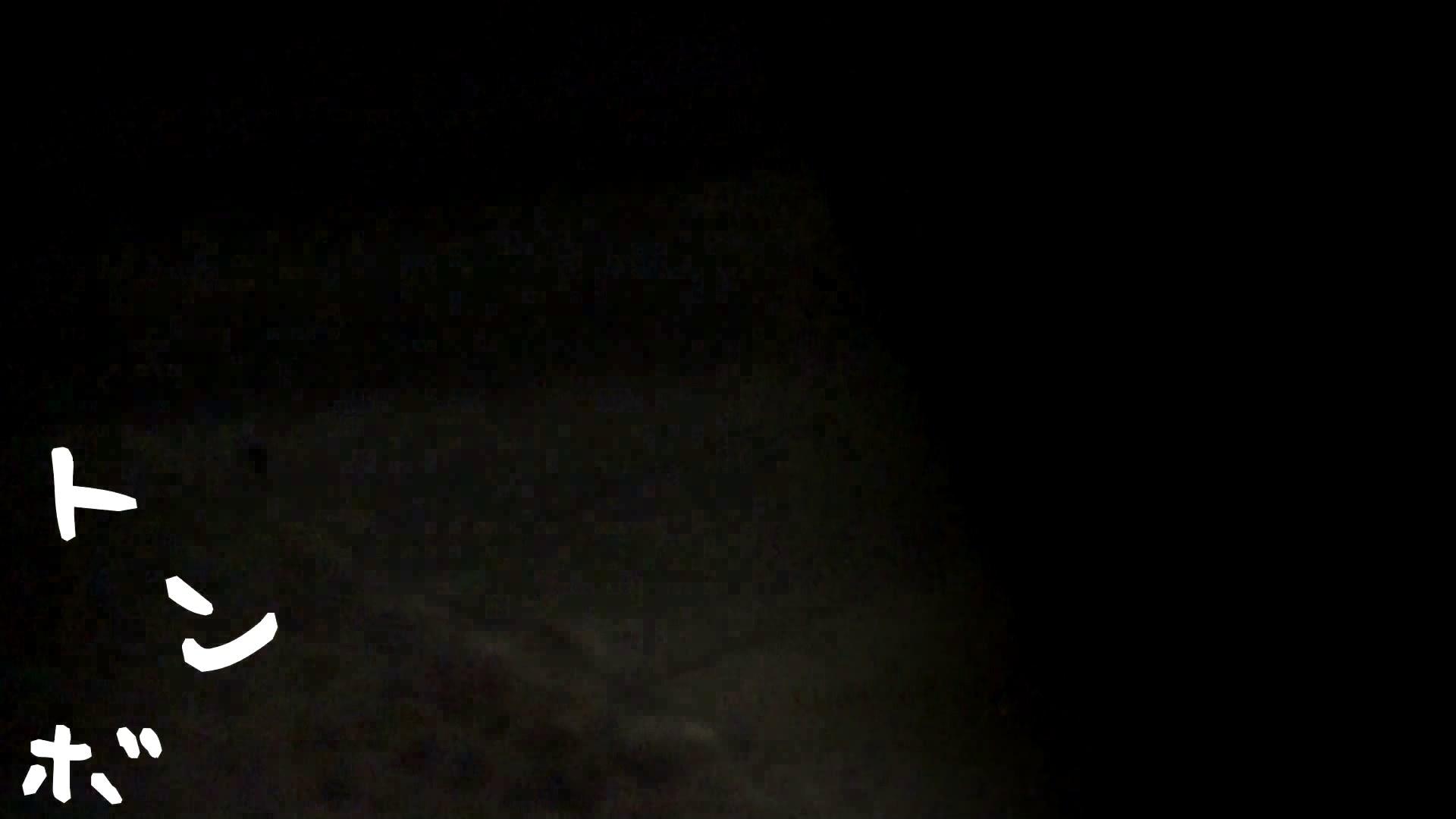 無修正エロ動画|リアル盗撮 清楚なお女市さんのマル秘私生活①|怪盗ジョーカー
