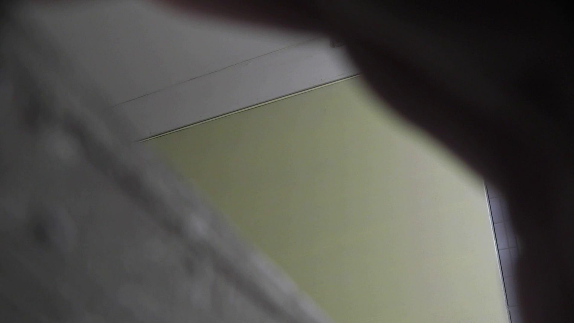 無修正エロ動画|洗面所特攻隊 vol.001 清楚な美脚さん|怪盗ジョーカー