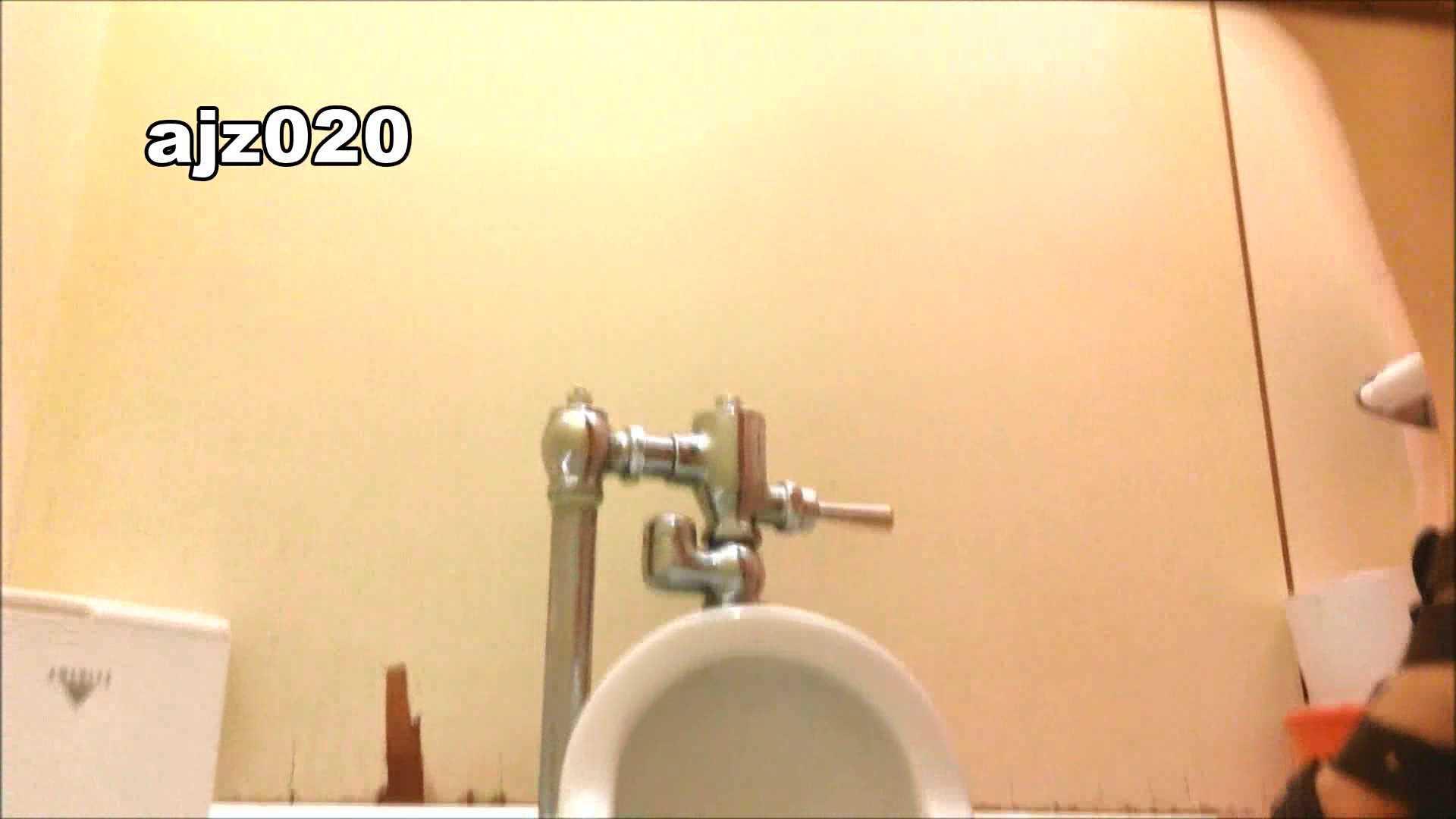 某有名大学女性洗面所 vol.20 潜入 | 洗面所  48画像 13