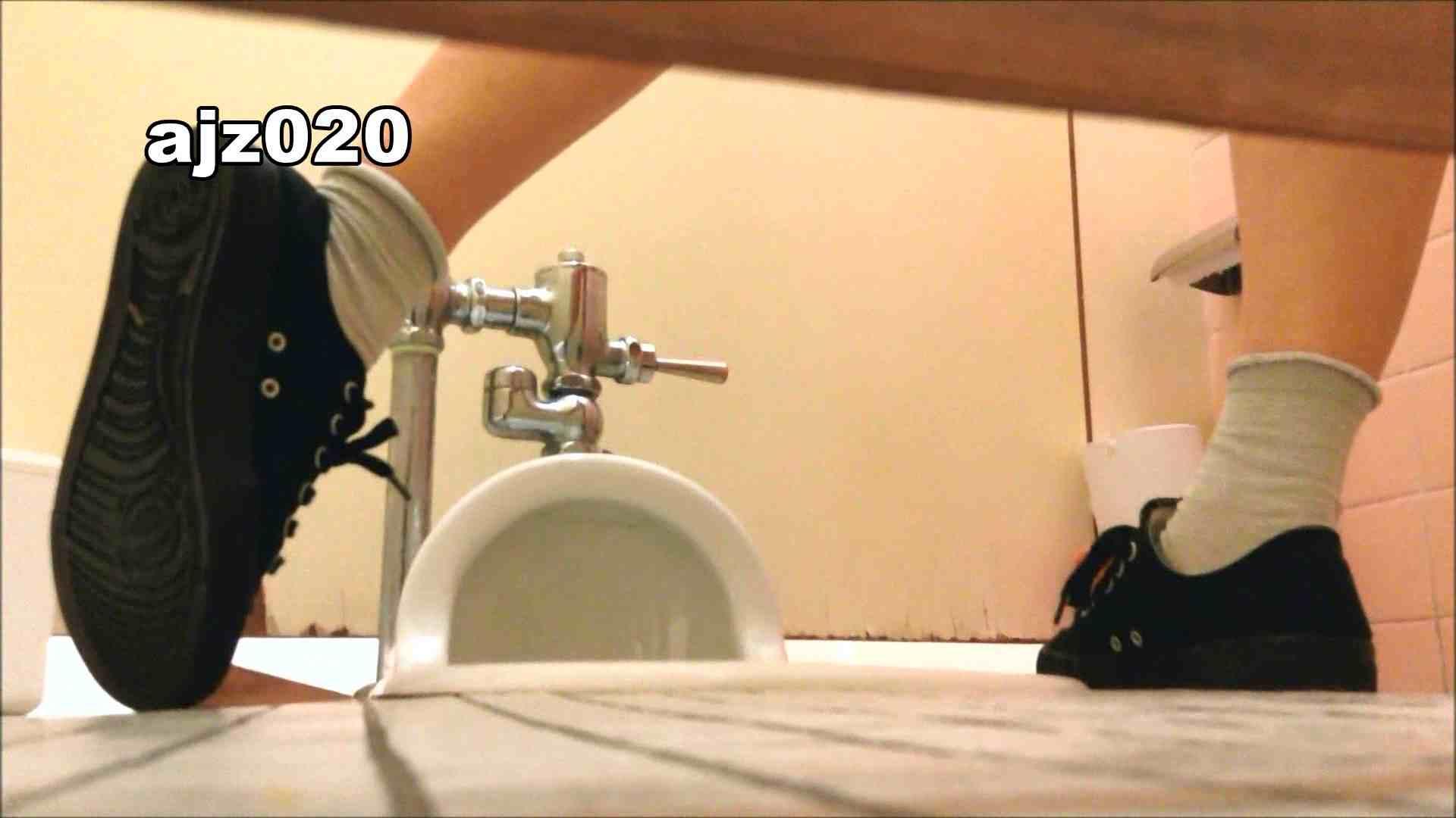 某有名大学女性洗面所 vol.20 和式 盗み撮りSEX無修正画像 48画像 47