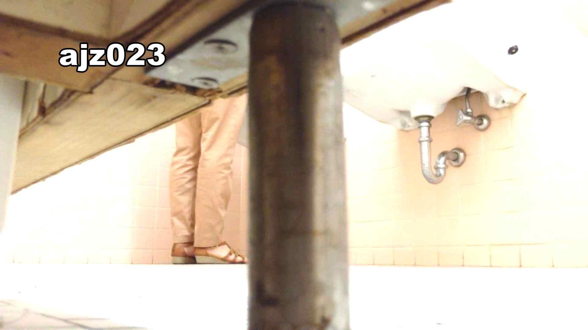 某有名大学女性洗面所 vol.23 洗面所 隠し撮りオマンコ動画紹介 101画像 31