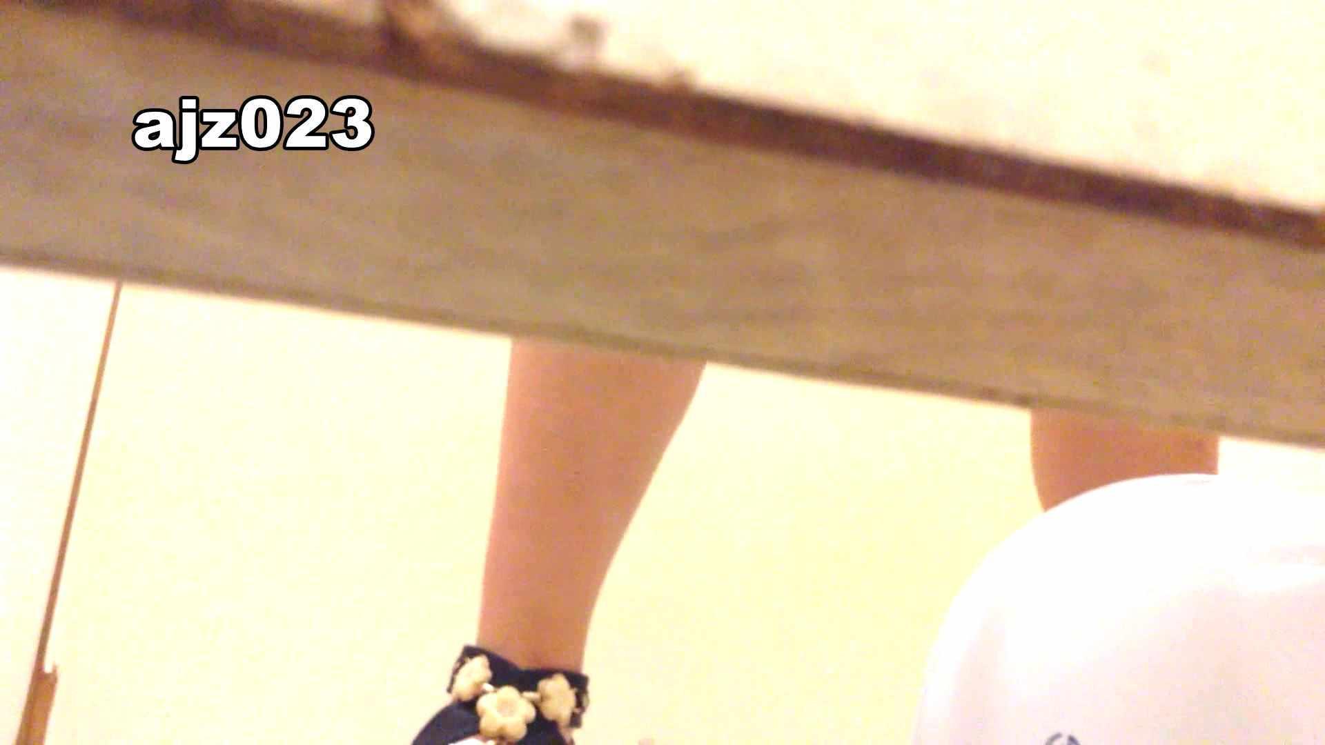 某有名大学女性洗面所 vol.23 潜入 濡れ場動画紹介 101画像 58