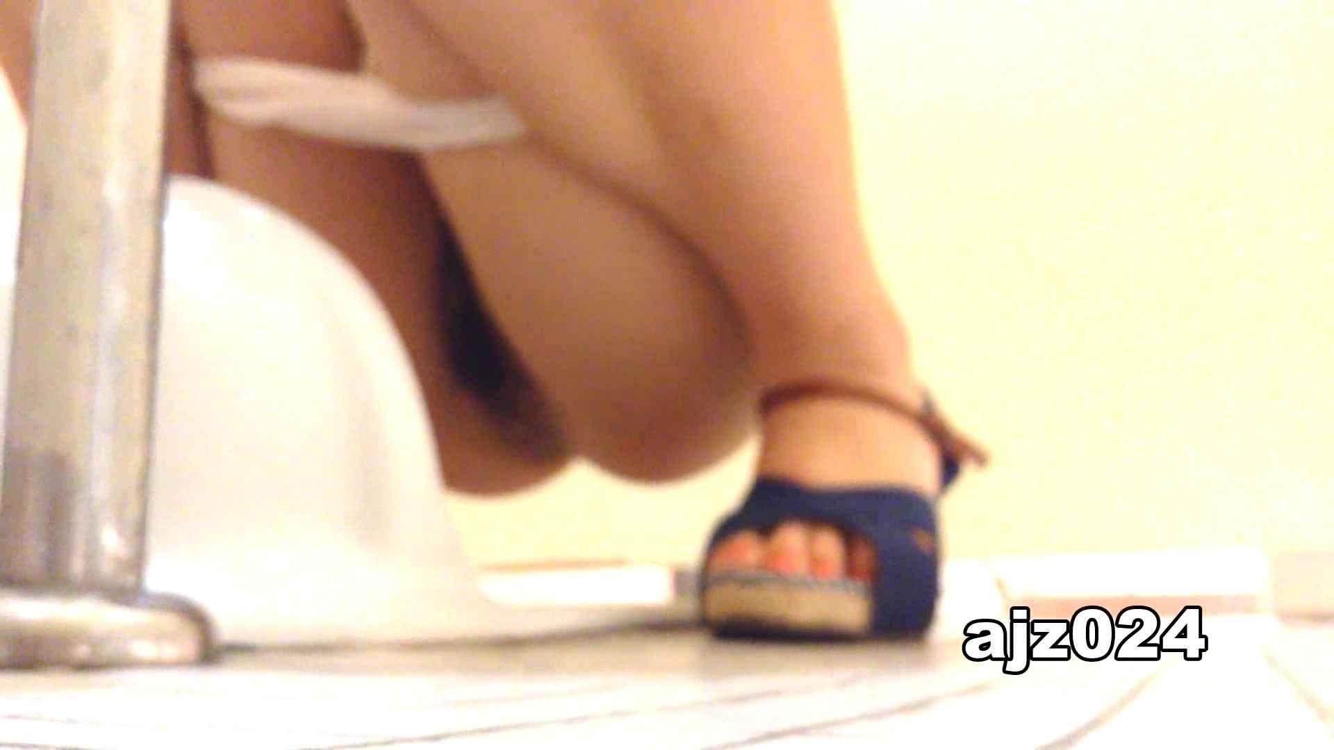 某有名大学女性洗面所 vol.24 OLセックス | 洗面所  59画像 13