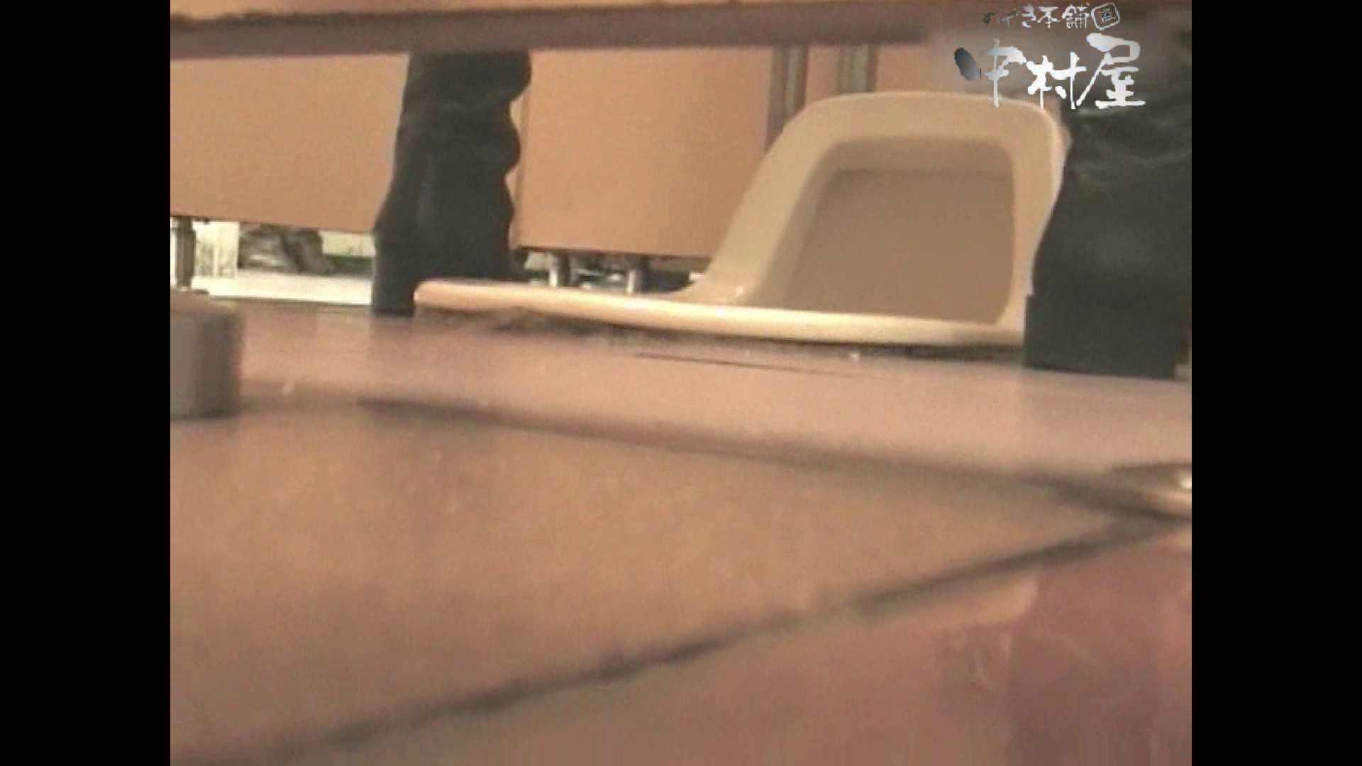 岩手県在住盗撮師盗撮記録vol.03 排泄 覗きおまんこ画像 99画像 97