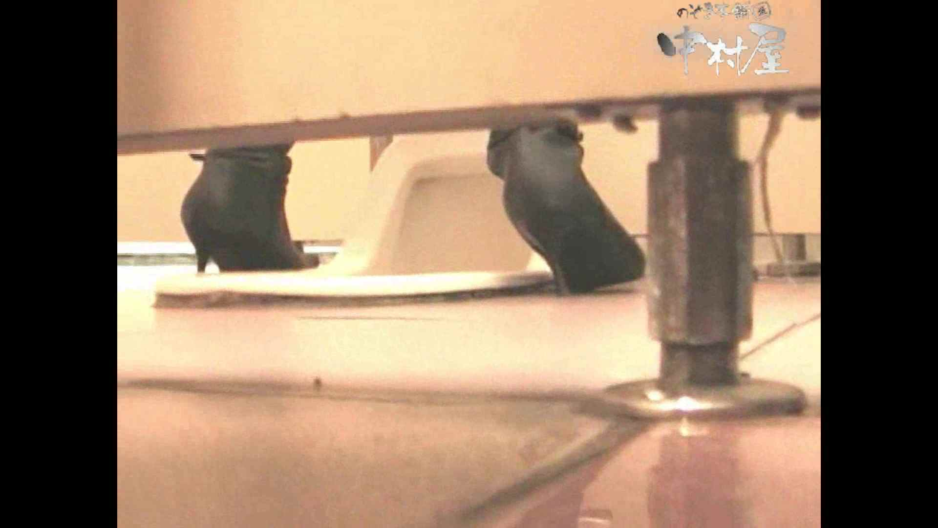 無修正エロ動画 岩手県在住盗撮師盗撮記録vol.06 のぞき本舗 中村屋