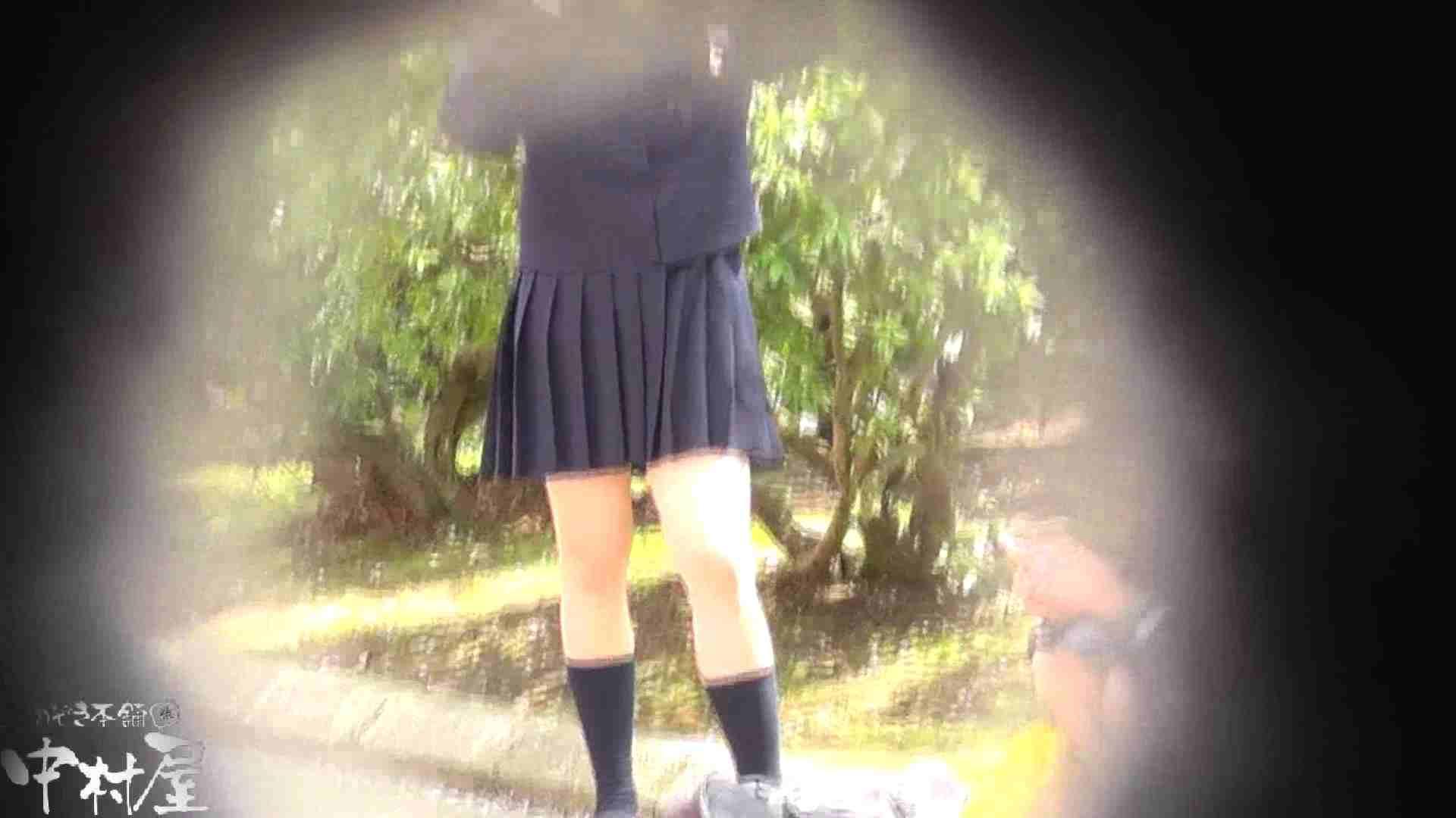 ドキドキ❤新入生パンチラ歓迎会vol.04 パンチラ 性交動画流出 69画像 43