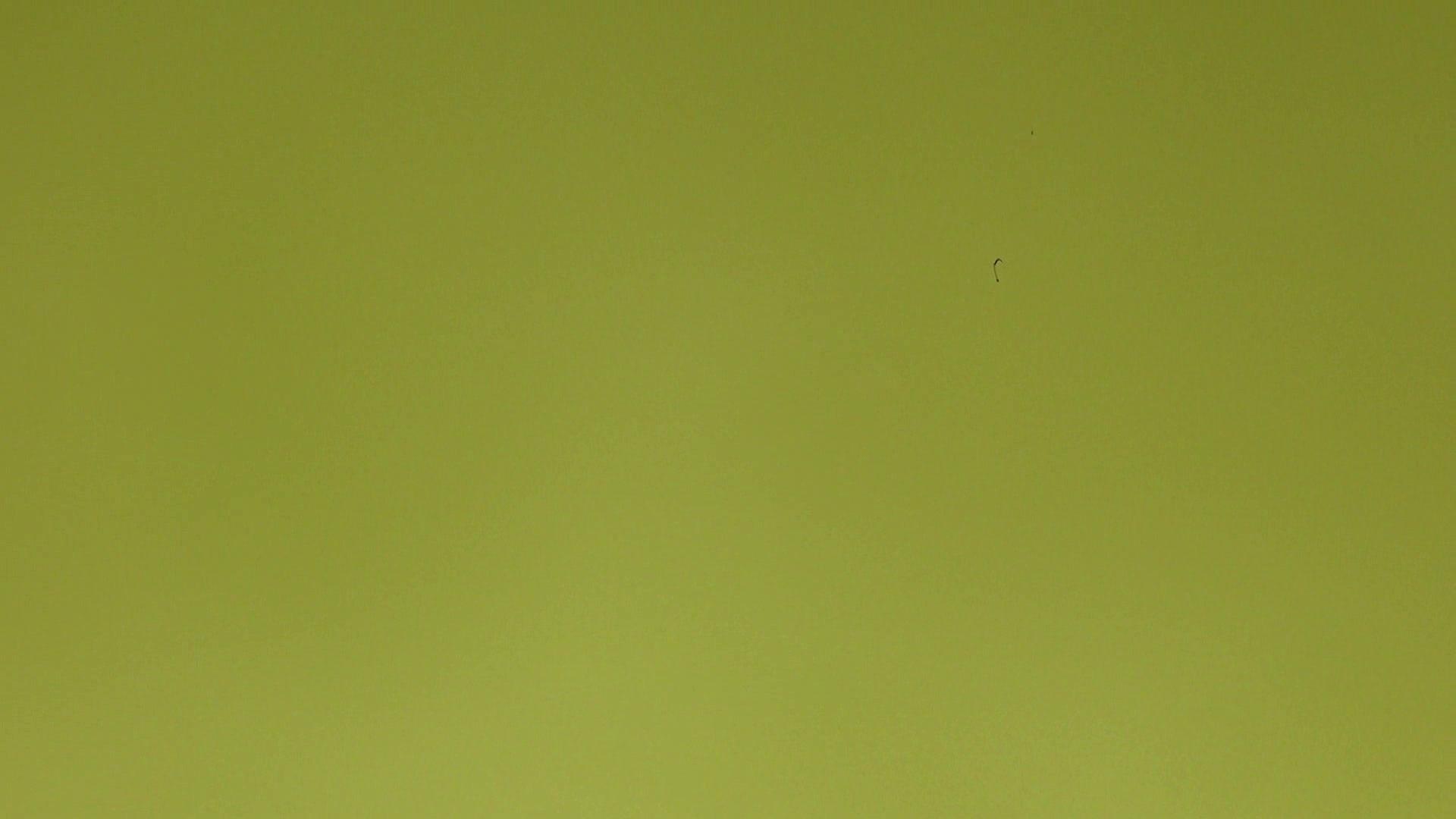 上級者の方専用 vol.03 OLセックス | 0  82画像 29