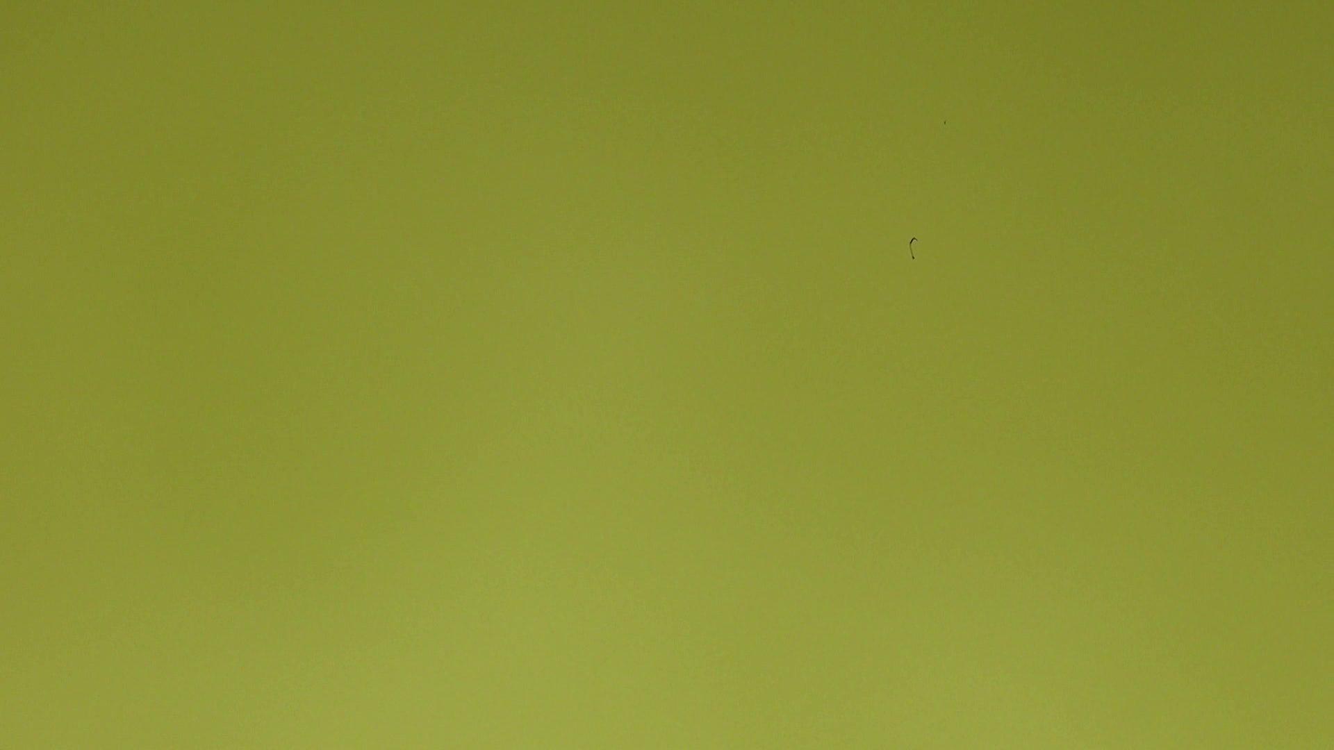 上級者の方専用 vol.03 OLセックス  82画像 30