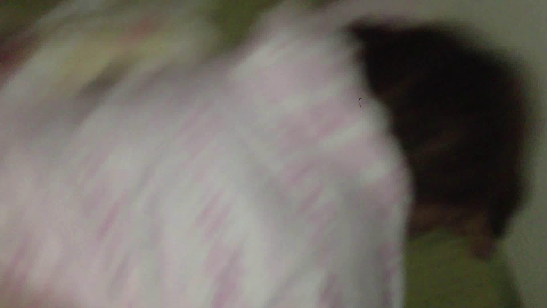 上級者の方専用 vol.03 OLセックス | 0  82画像 71