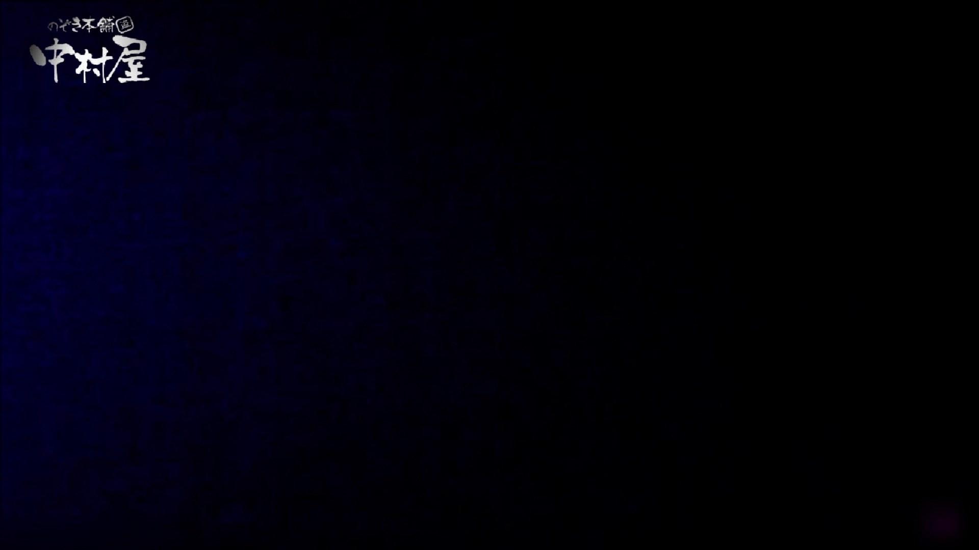 女子トイレ盗撮~某ファミレス編~vol.23 トイレ  79画像 10