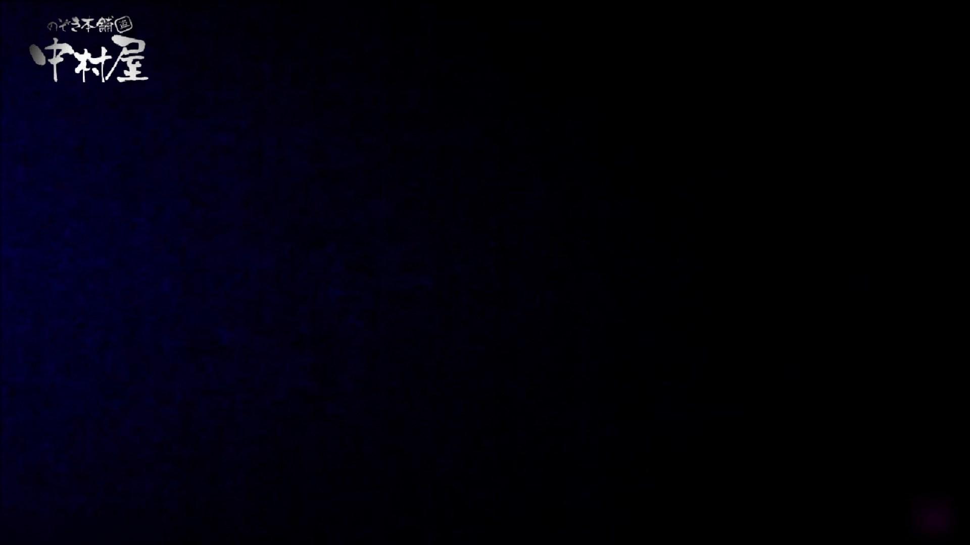 女子トイレ盗撮~某ファミレス編~vol.23 トイレ   盗撮  79画像 11
