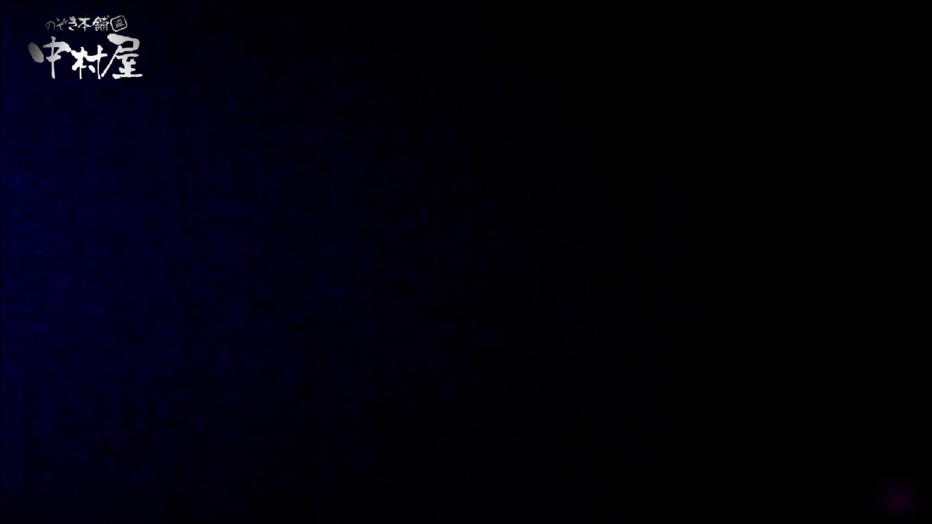 女子トイレ盗撮~某ファミレス編~vol.23 OLセックス 盗撮AV動画キャプチャ 79画像 12