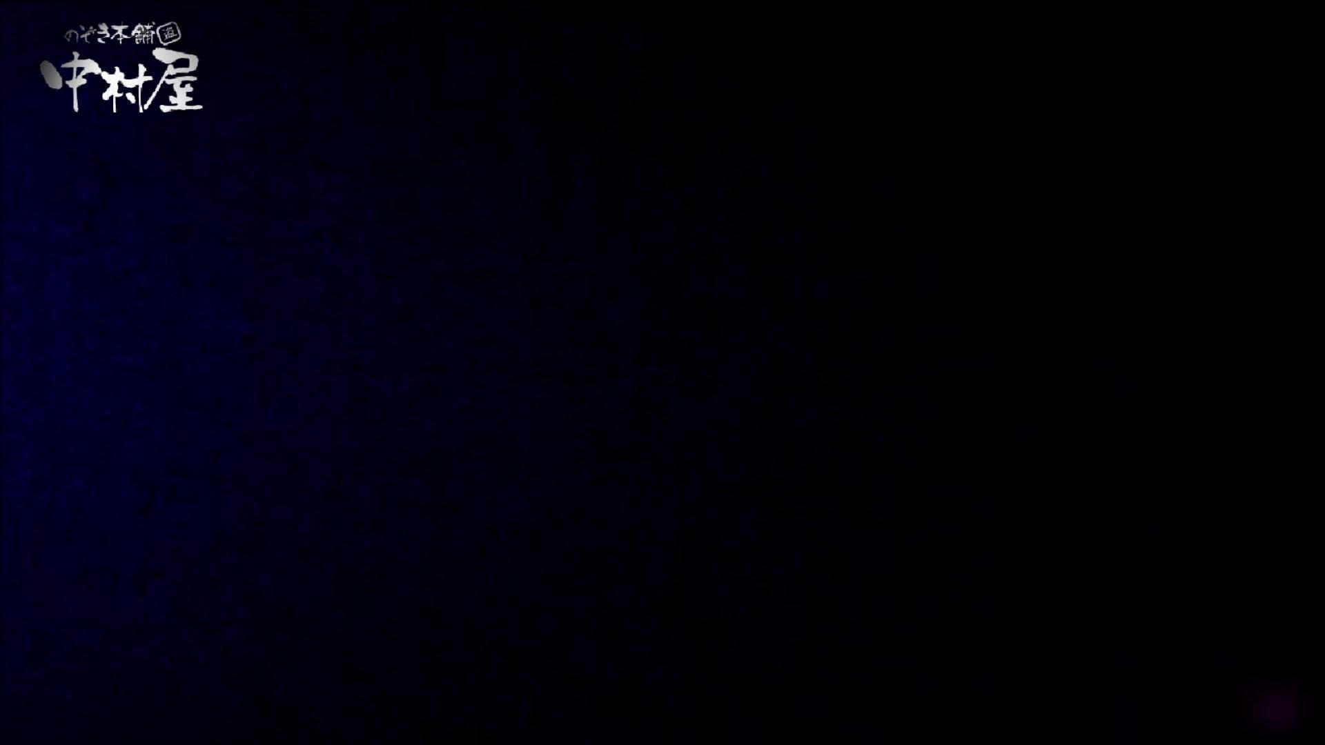 女子トイレ盗撮~某ファミレス編~vol.23 潜入 セックス画像 79画像 13