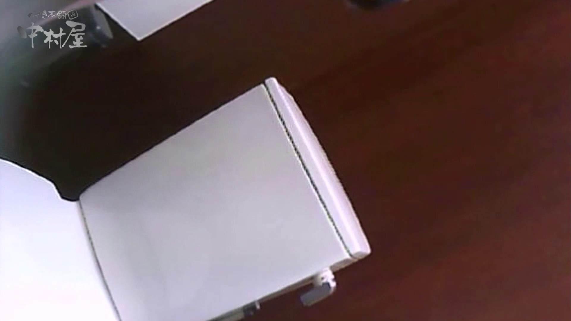 女子トイレ盗撮~某ファミレス編~vol.36 女子トイレ 隠し撮りセックス画像 97画像 29