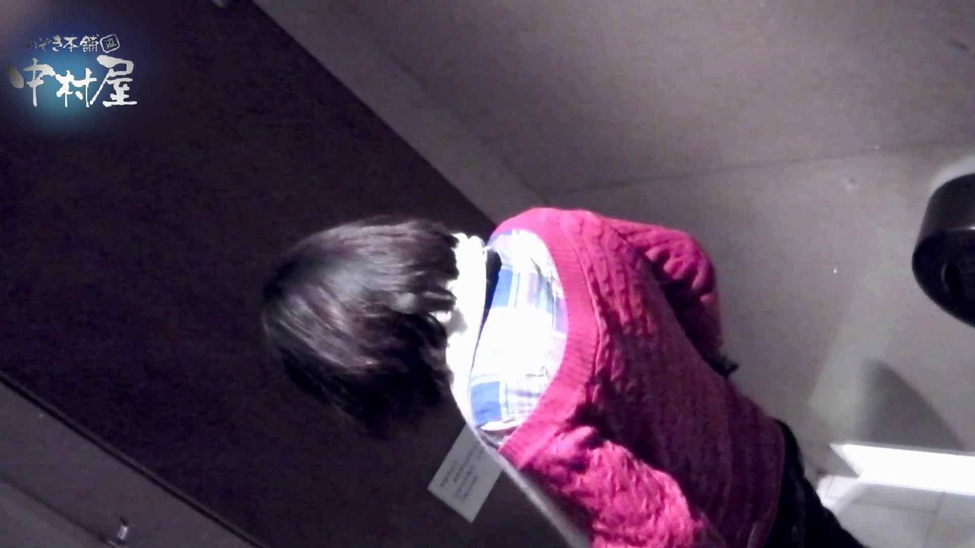 乙女集まる!ショッピングモール潜入撮vol.07 丸見え 隠し撮りセックス画像 102画像 71