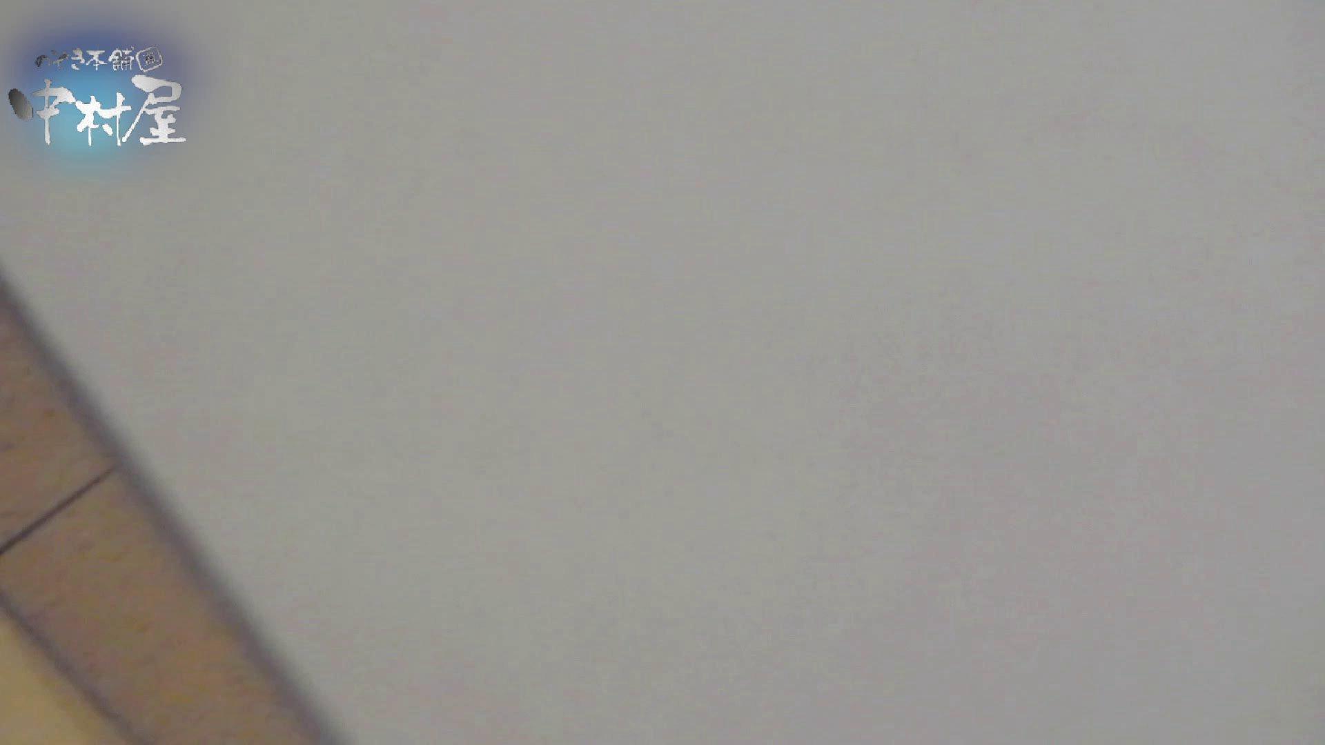乙女集まる!ショッピングモール潜入撮vol.07 丸見え 隠し撮りセックス画像 102画像 77
