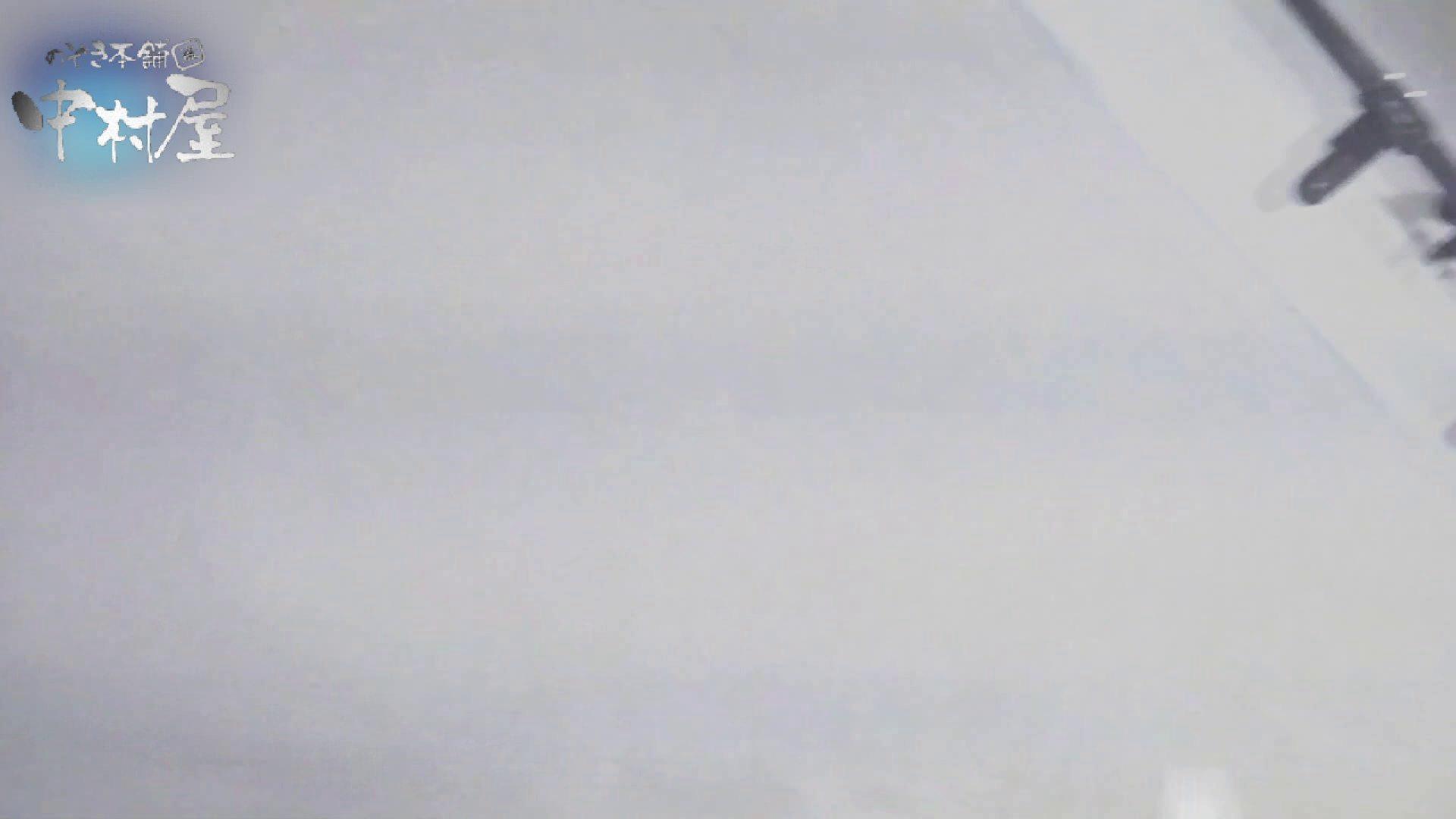 乙女集まる!ショッピングモール潜入撮vol.08 和式 覗き性交動画流出 55画像 23