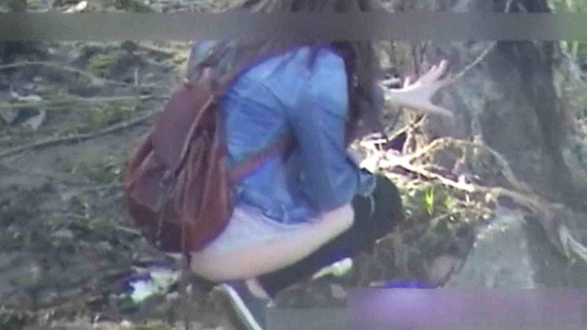 ハプニングッド!妖精達のオシッコ Vol.02 ギャルヌード オメコ無修正動画無料 111画像 35