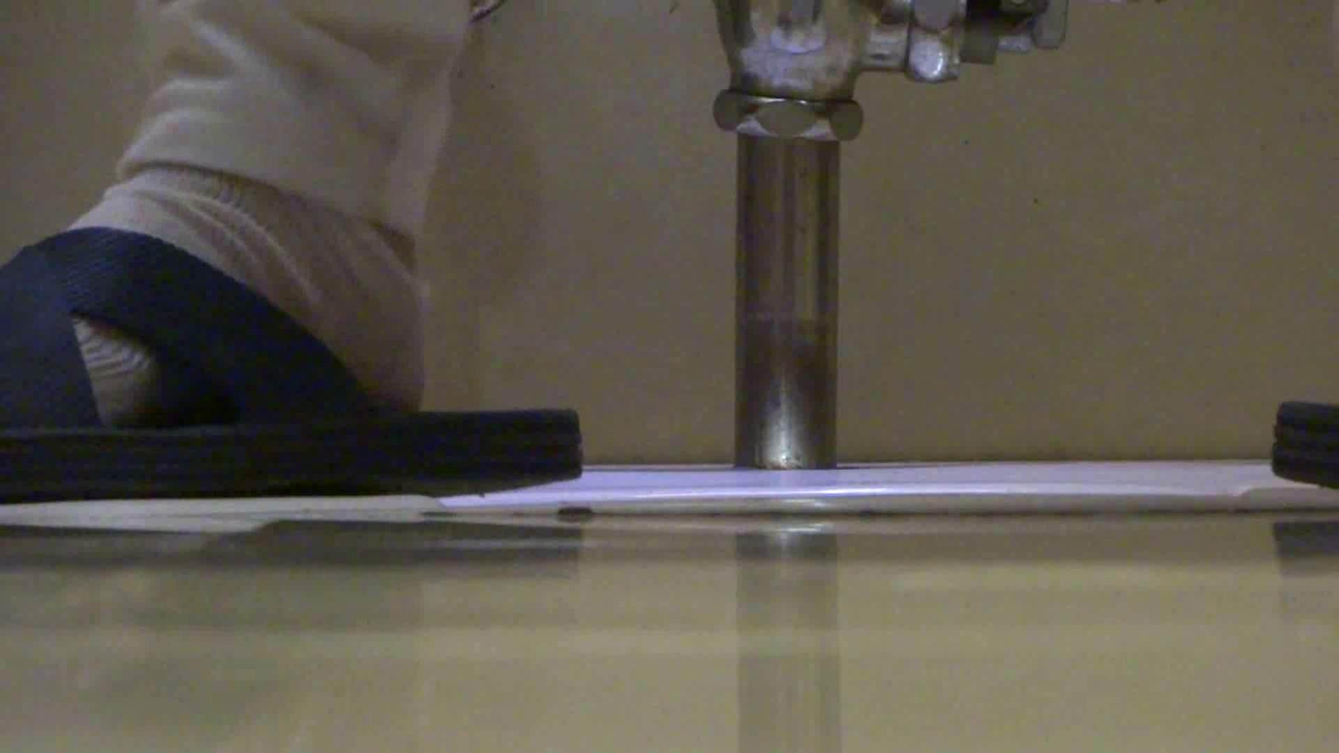 「噂」の国の厠観察日記2 Vol.15 OLセックス 隠し撮りすけべAV動画紹介 96画像 65