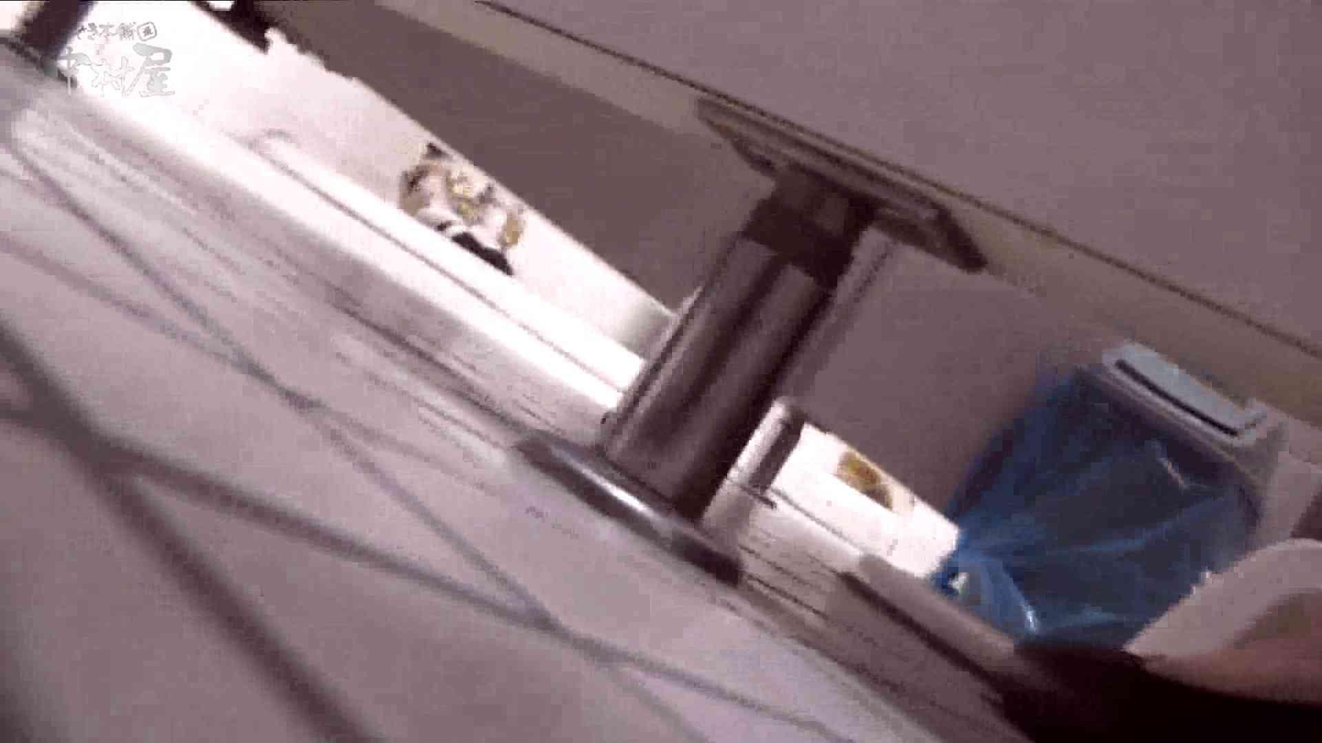 洗面所突入レポート!!vol.16 トイレ 覗き性交動画流出 58画像 25