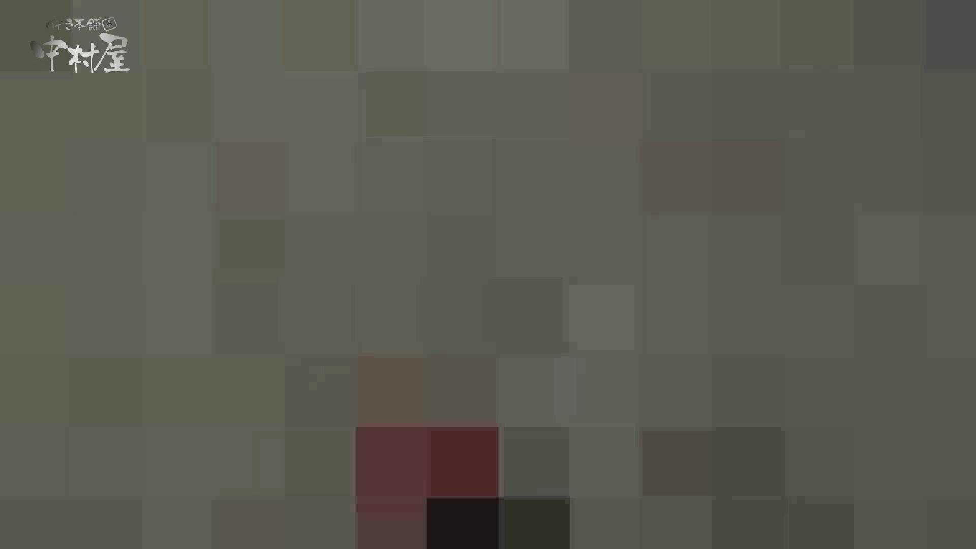 洗面所突入レポート!!vol.27 トイレ 覗きオメコ動画キャプチャ 65画像 5