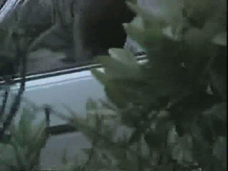 バットマンさんから独占入手!!無修正カーセックスvol.12 盗撮 のぞき動画画像 63画像 10