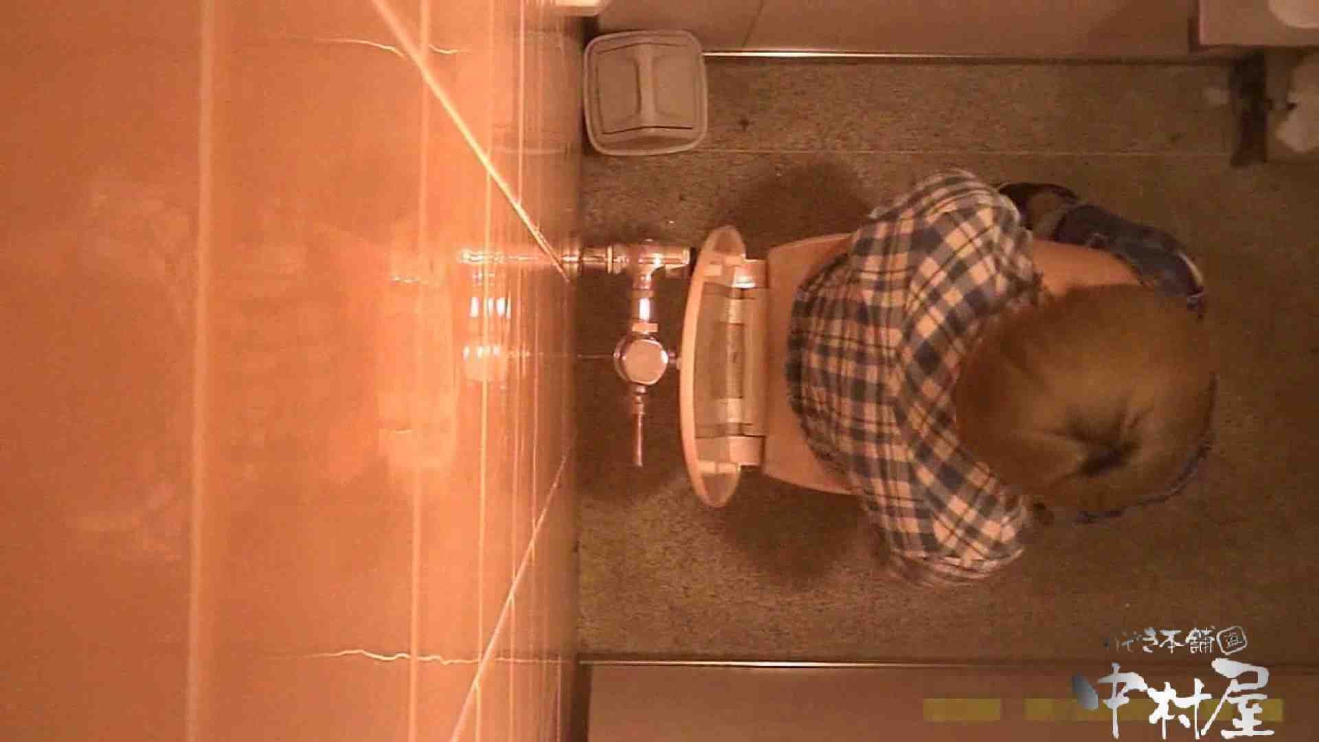 初盗撮!女盗撮師カレンさんの 潜入!女子トイレ盗撮!Vol.2 OLセックス | 女子トイレ  55画像 1
