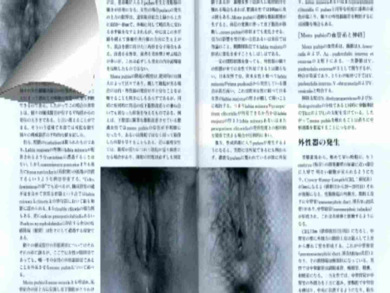 日本女性の外性器① 性器   0  70画像 27