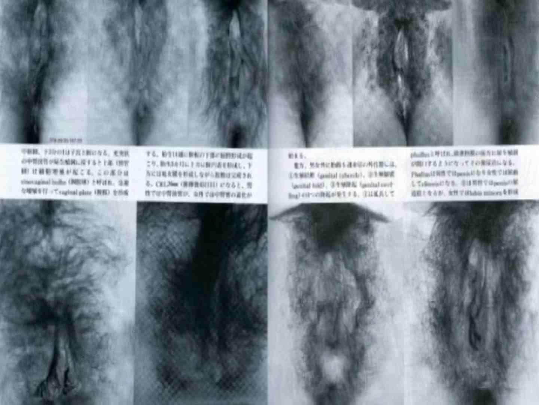 日本女性の外性器① 性器   0  70画像 29