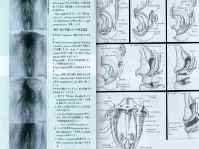 日本女性の外性器① 性器   0  70画像 31