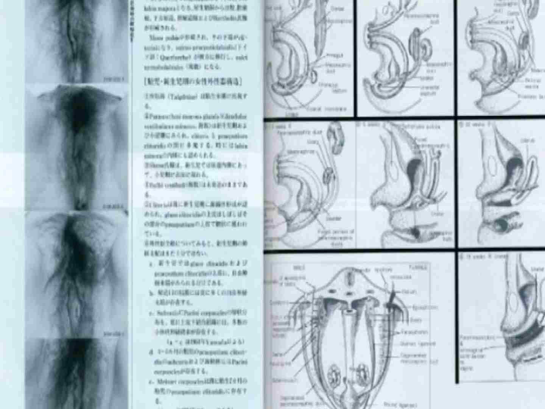 日本女性の外性器① 性器  70画像 32