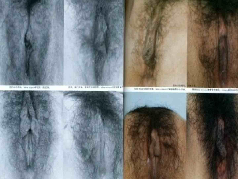 日本女性の外性器① 性器  70画像 40