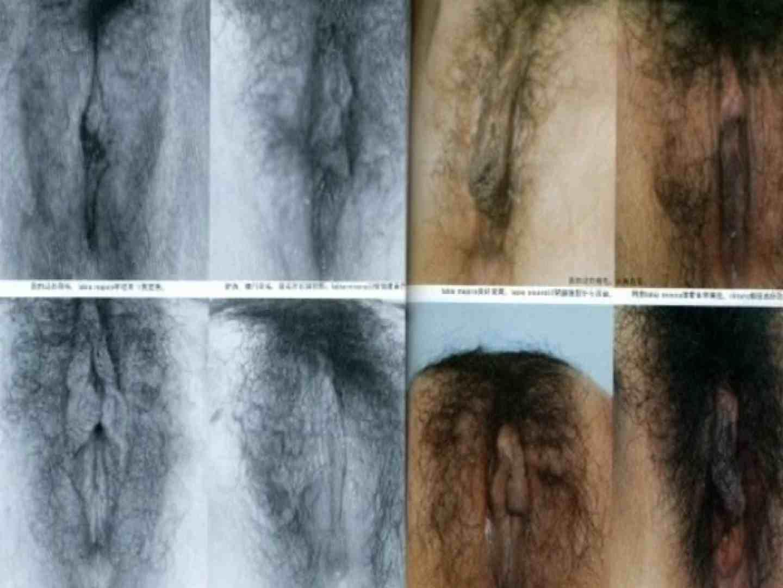 日本女性の外性器① 性器   0  70画像 41