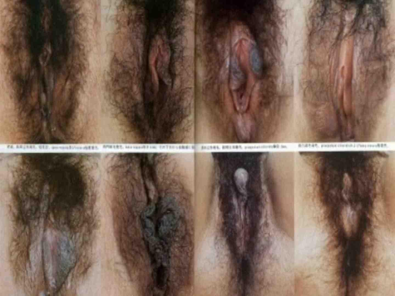 日本女性の外性器① 性器  70画像 58