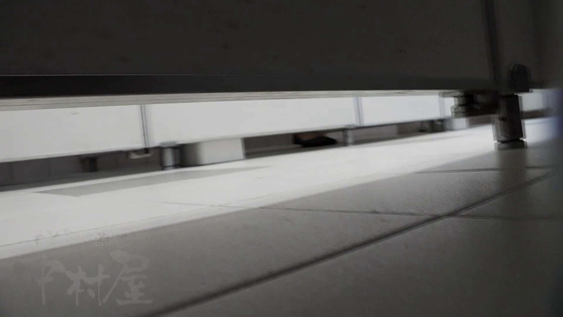 美しい日本の未来 No.07 肛門 | 女子トイレ  95画像 10