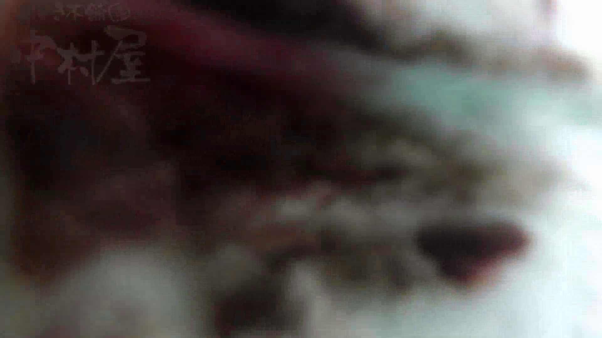 美しい日本の未来 No.17 番外編 ※※※閲覧注意※※※ 乙女 えろ無修正画像 105画像 12