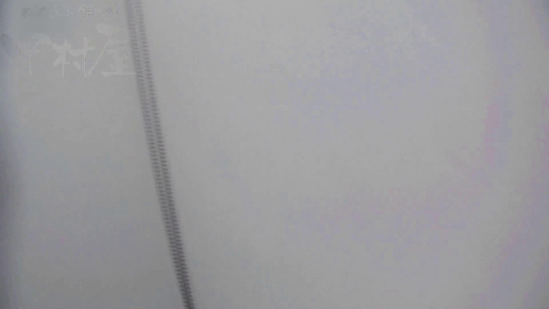 美しい日本の未来 No.17 番外編 ※※※閲覧注意※※※ 盗撮 盗撮動画紹介 105画像 50