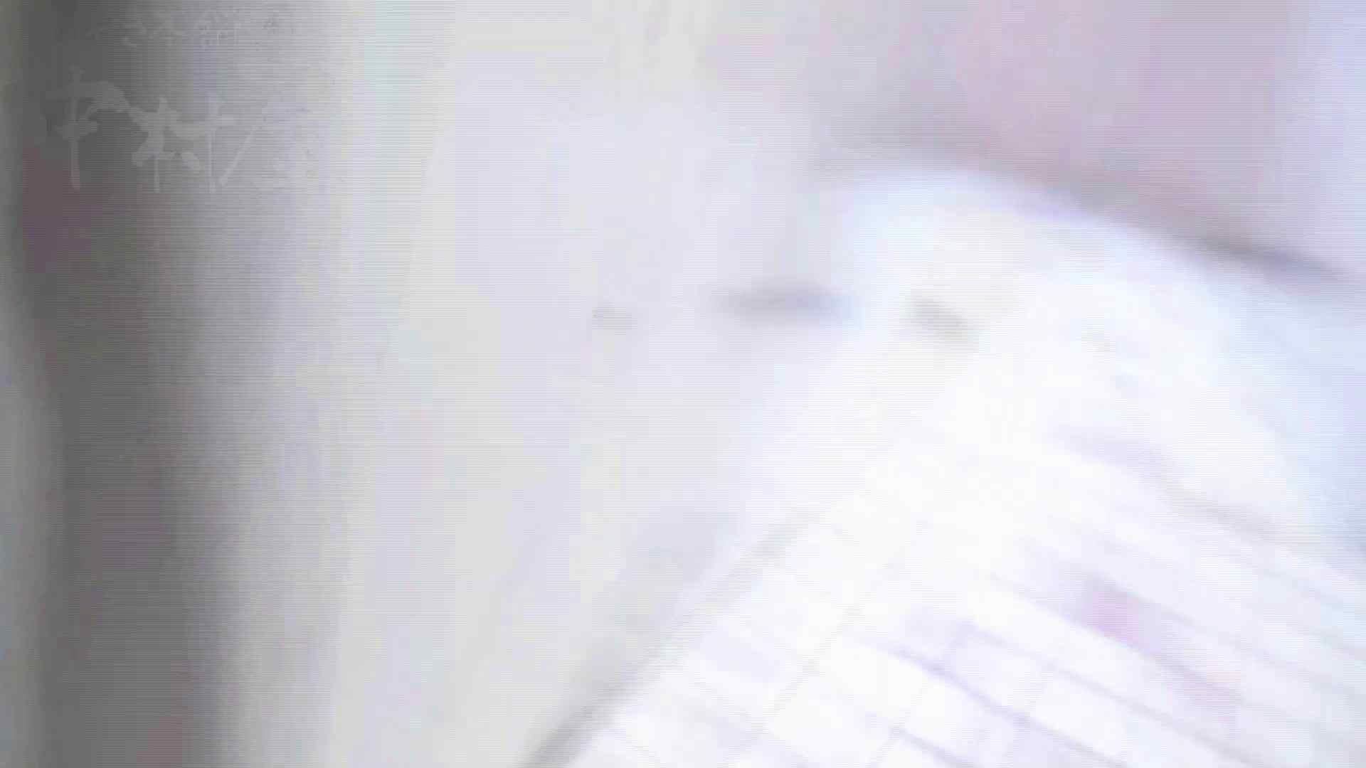 美しい日本の未来 No.17 番外編 ※※※閲覧注意※※※ トイレ 盗撮セックス無修正動画無料 105画像 67