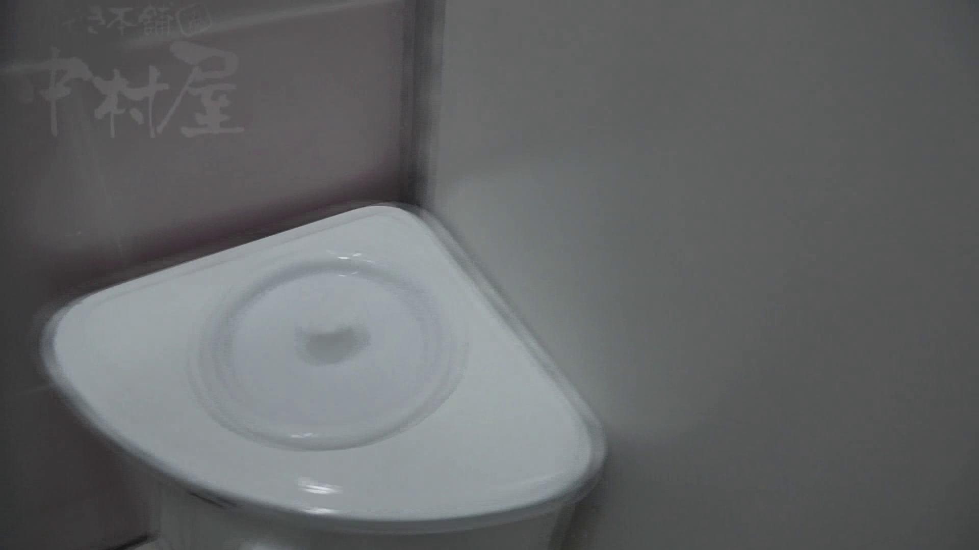 美しい日本の未来 No.17 番外編 ※※※閲覧注意※※※ 女子トイレ 盗撮セックス無修正動画無料 105画像 70