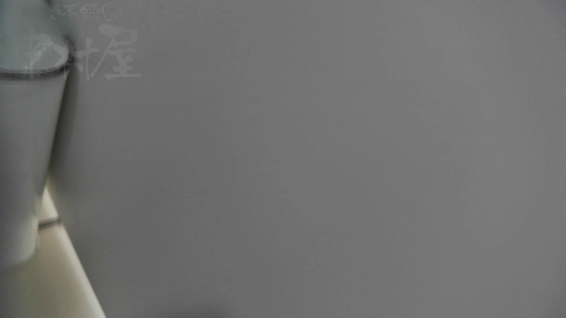 美しい日本の未来 No.17 番外編 ※※※閲覧注意※※※ 盗撮 盗撮動画紹介 105画像 74