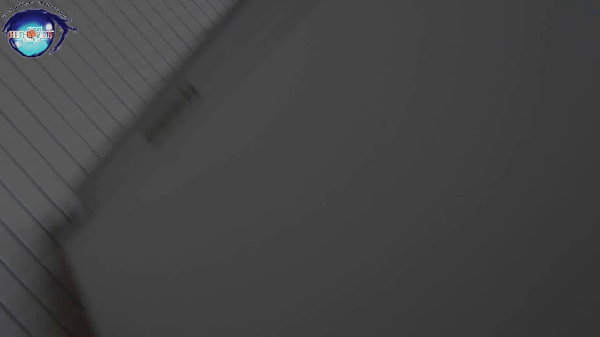 雅さんの独断と偏見で集めた動画集 厠編vol.01 厠  107画像 2