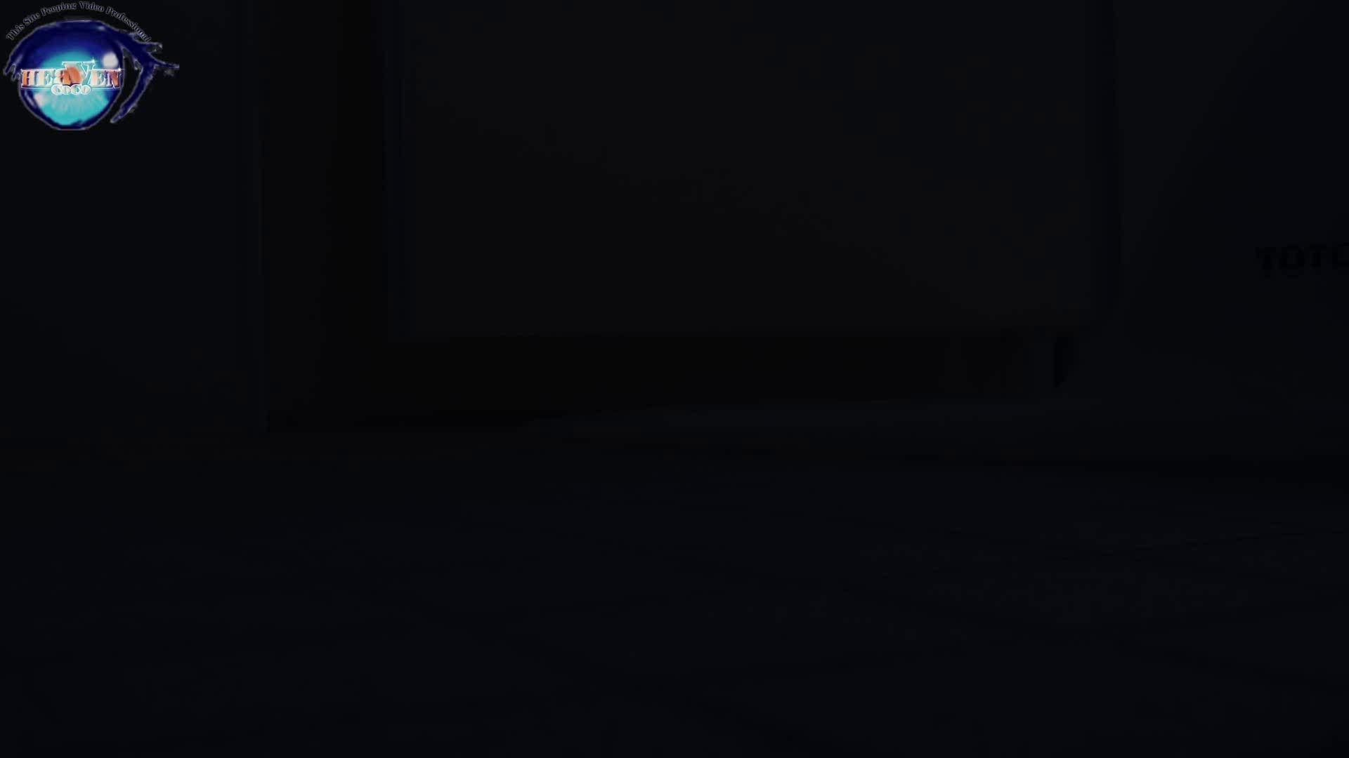 雅さんの独断と偏見で集めた動画集 厠編vol.01 厠  107画像 66
