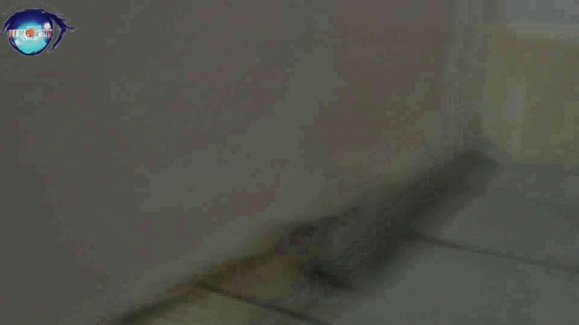 雅さんの独断と偏見で集めた動画集 厠編vol.07 OLセックス  90画像 86