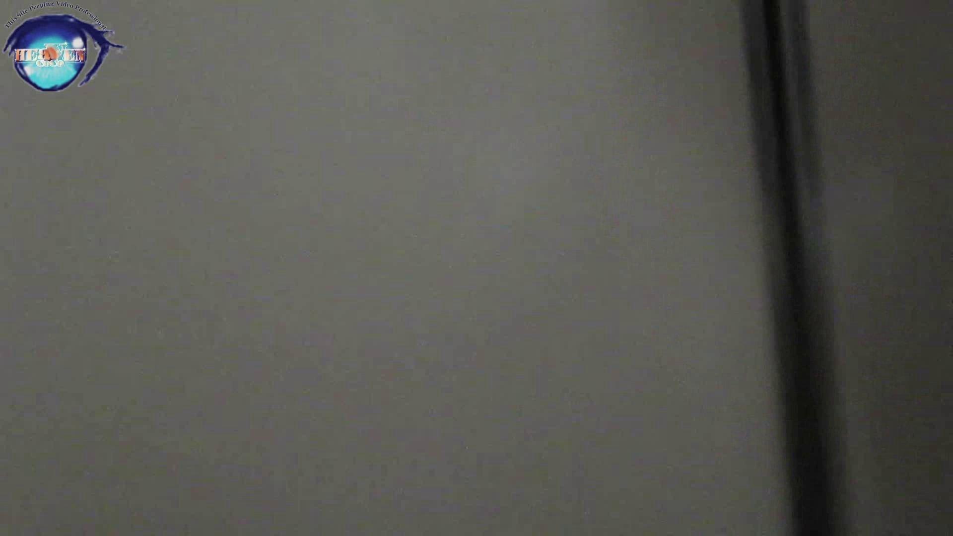 雅さんの独断と偏見で集めた動画集 厠編vol.12 厠   OLセックス  99画像 3