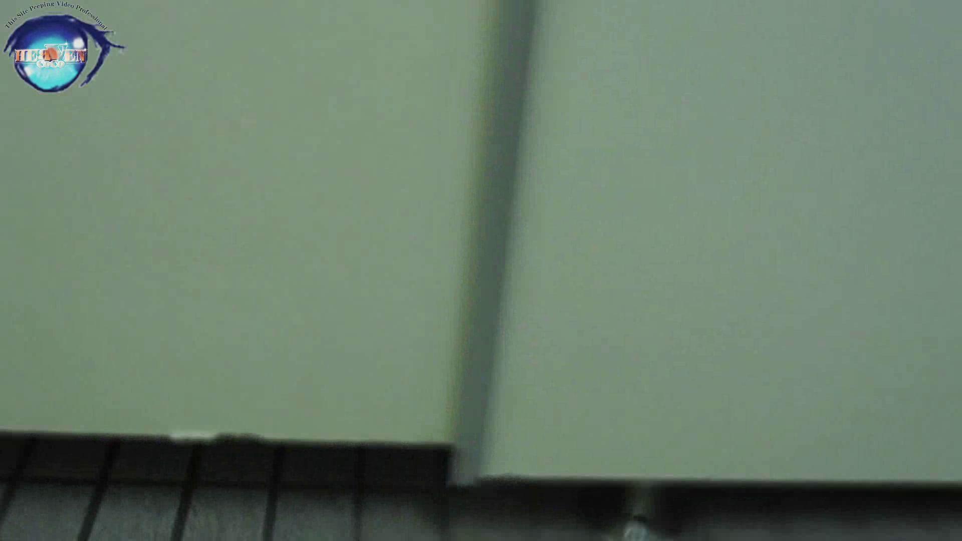 雅さんの独断と偏見で集めた動画集 厠編vol.12 厠   OLセックス  99画像 51